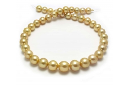 Gold Yellow South sea  Pearl Necklaces